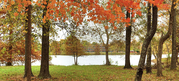 Campus Lake Picture
