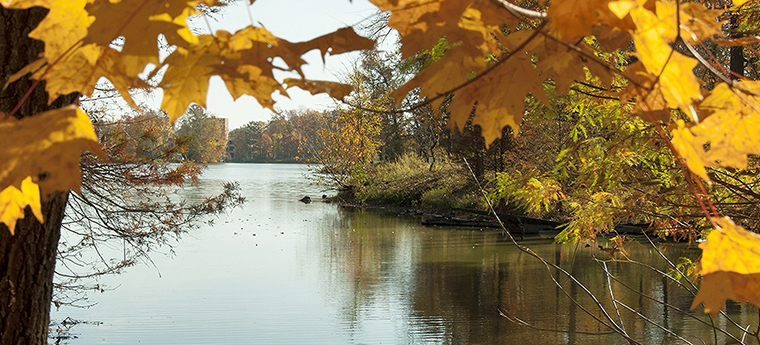 campus lake in fall